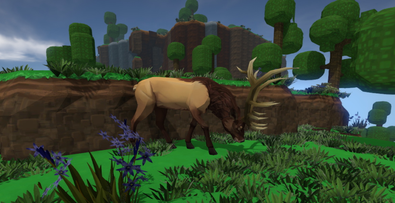 Elk 1170x600 Playful Oasis