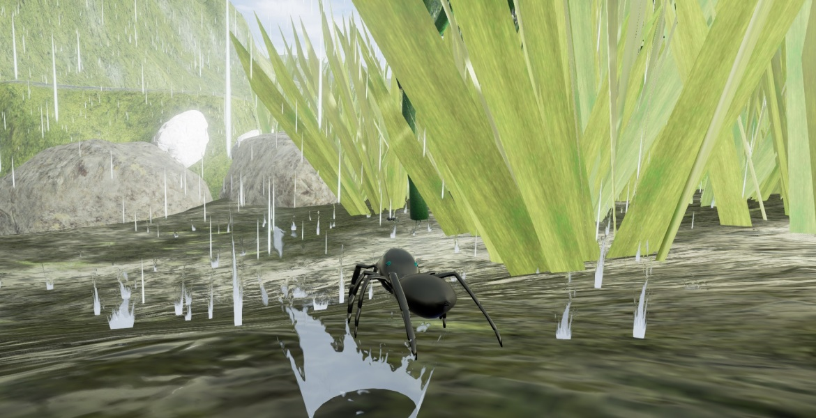 Spider In Rain 1170x600 Playful Oasis